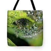 On Drops Of Dew Tote Bag