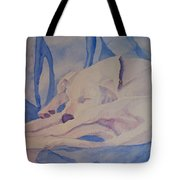 On Fallen Blankets Tote Bag