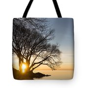 On Fire - Bright Sunrise Through The Willows Tote Bag