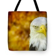 On Fire The American Bald Eagle Tote Bag