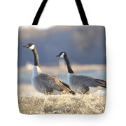 On The Bank Tote Bag