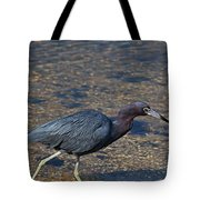 On The Banks Of The Backwater Tote Bag