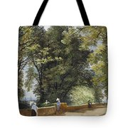 On The Castle Wall, Exeter Tote Bag