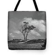 On The Dunes, Carpinteria Tote Bag