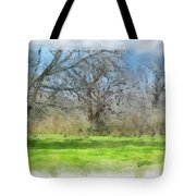 On The Edge Of A Dream Tote Bag
