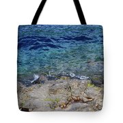 On The Edge Of The Crescent Tote Bag