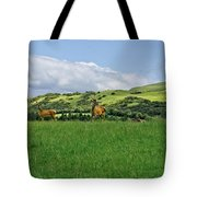 On The Look-out. Tote Bag
