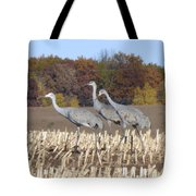 On The March . . . Tote Bag
