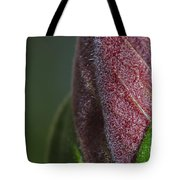 On The Path To Bloom Tote Bag