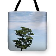 On The Prairie Tote Bag