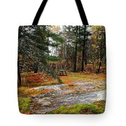 Picnic On The Rocks Tote Bag