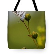 On The Tip Tote Bag