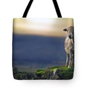 On The Top Of The World Tote Bag