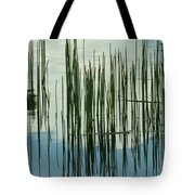On The Way To Tractor Supply 3 1 Tote Bag