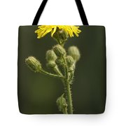 On The Wild Side Tote Bag