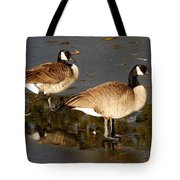 On Thin Ice Tote Bag