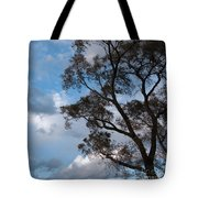 On Winds Of Evening Tote Bag