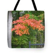 Onaway Tote Bag
