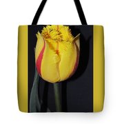 Once Again Spring Tote Bag