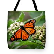 Once Upon A Butterfly 001 Tote Bag