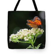 Once Upon A Butterfly 005 Tote Bag