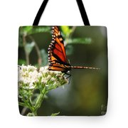 Once Upon A Butterfly 006 Tote Bag
