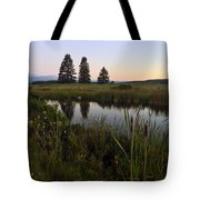 Once Upon A Time... Tote Bag by LeeAnn Kendall