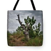 Once Was 10633 Tote Bag
