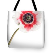 One Anemone Tote Bag