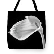 One Beautiful Calla Lily In Black And White Tote Bag