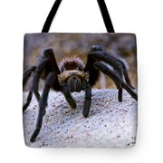 One Big Hairy Spider Tote Bag