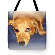 One Blue Eye Tote Bag