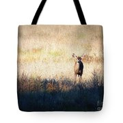 One Cute Deer Tote Bag