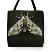 One Eyed Sphinx Moth Tote Bag
