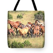 One Follows Another Tote Bag