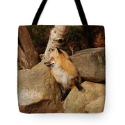 One Foot At A Time Tote Bag