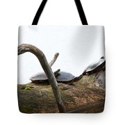 One Hiding Turtle Tote Bag