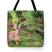 One Hop From The Warren Tote Bag