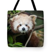 One Intense Critter Tote Bag