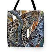 One Little Cheetah Sitting In A Tree Tote Bag