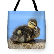 One Little Duckling Tote Bag