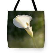 One. Tote Bag