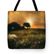 one morning in Clare Tote Bag