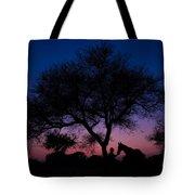 Evening In Rajasthan Tote Bag