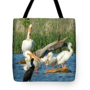 One Sassy Pelican And Friends, West Central Minnesota Tote Bag