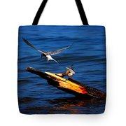 One Tern Flight Tote Bag by Amanda Struz