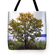 One Tree Hudson River View Tote Bag