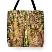 One Tree Six Trunks Tote Bag
