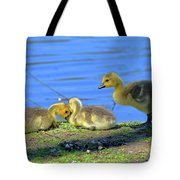 One Up Two Down Tote Bag