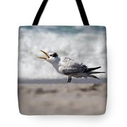 One Upset Royal Tern Tote Bag